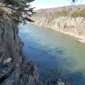 scenic view of Great Falls Park